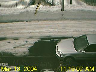 20030313.jpg